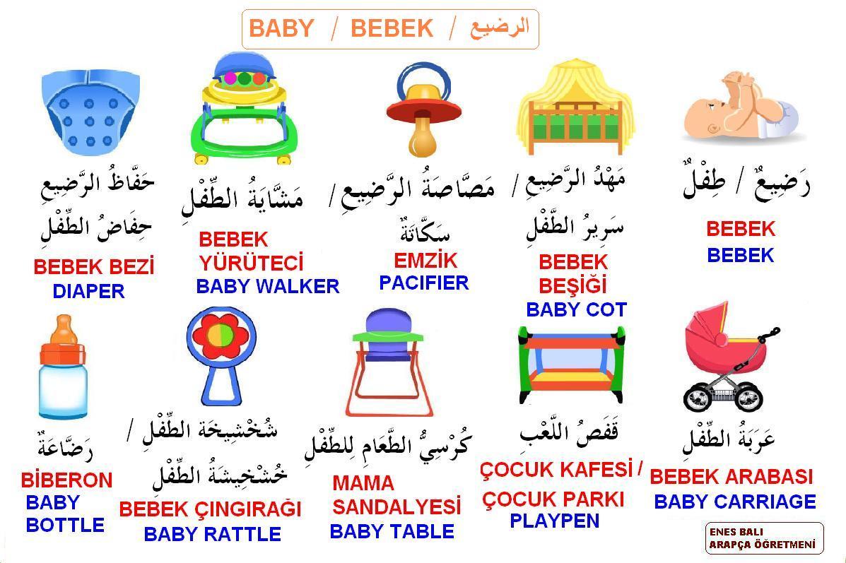 Bebek Terimleri
