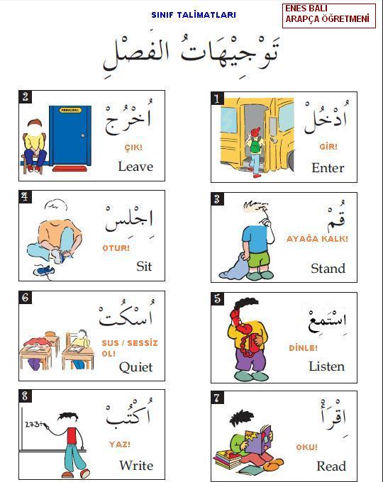 Sınıf Talimatları توجيهات الفصل