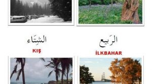 Arapça'da Mevsimler-Resimli