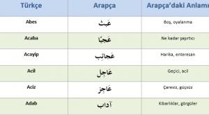 Arapça'dan Türkçe'ye Geçen 600 Kelime (PDF)