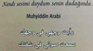 Muhyiddin Arabi'den Sözler (Arapça)