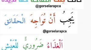 Arapça Cümle Çeviri Testi 6 Çöz